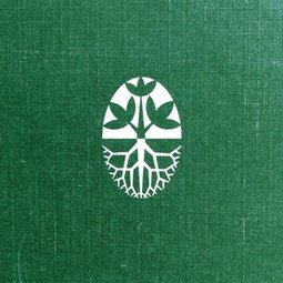 Bitki Saksı Seramik
