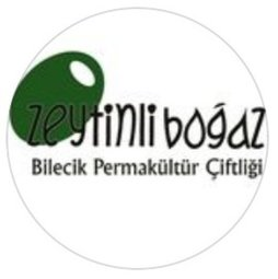 Zeytinlibogaz