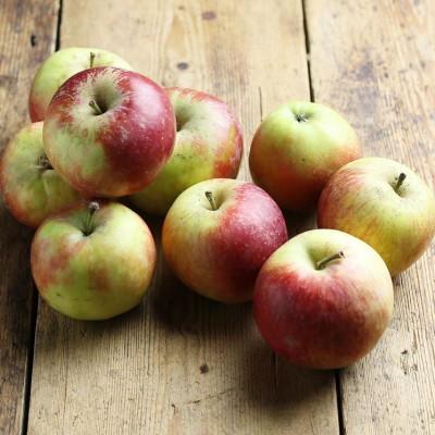 Organik Elma 0.5kg