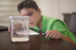 Evde Bilim 5. Sınıf Deney Seti (ıı. Dönem)