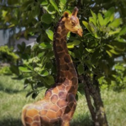 Safari Serisi Zürafa Heykeli