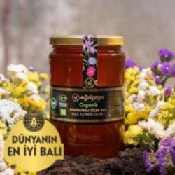 Eğriçayır Organik Polifloralı (çok Çiçekli) Bal 850 Gr