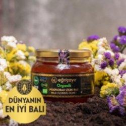 Eğriçayır Organik Polifloralı (çok Çiçekli) Bal 450 Gr